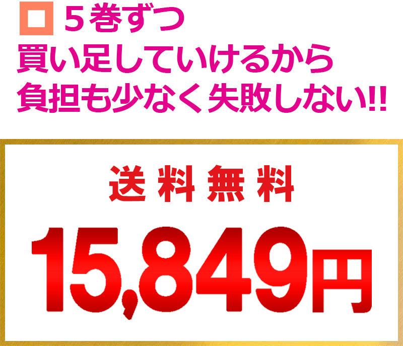 送料無料・15,849円
